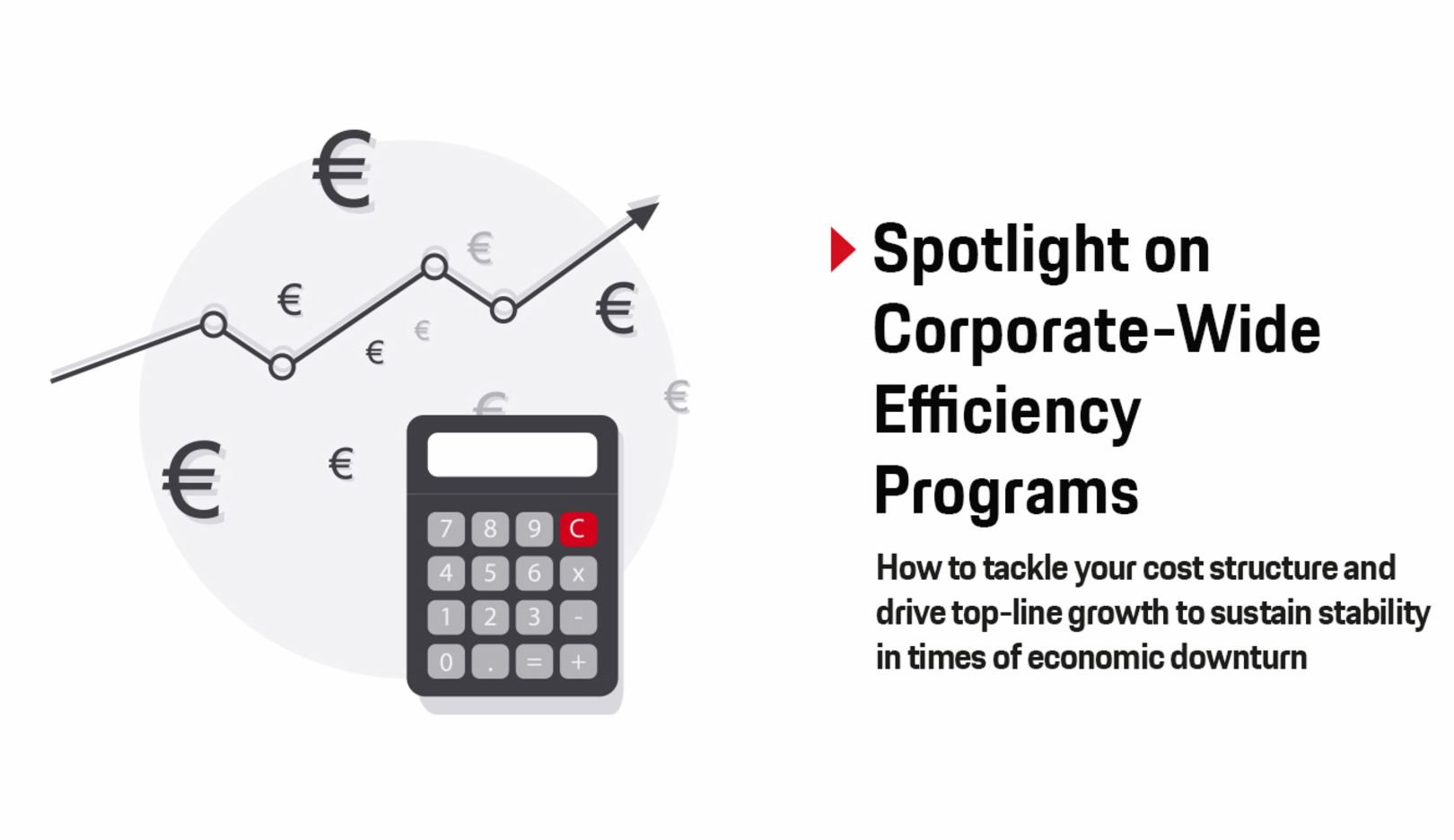 Spotlight on Coporate-Wide Efficency Programs, Paper, 2019, Porsche Consulting GmbH