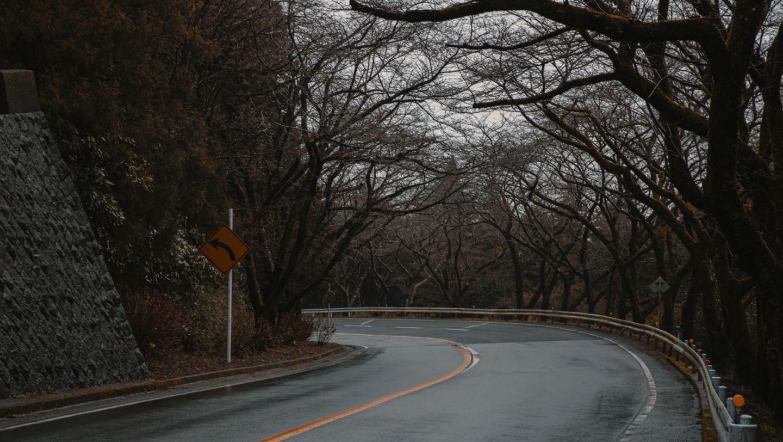 Sunday Drives: Kyoko Yamashita - Image 2