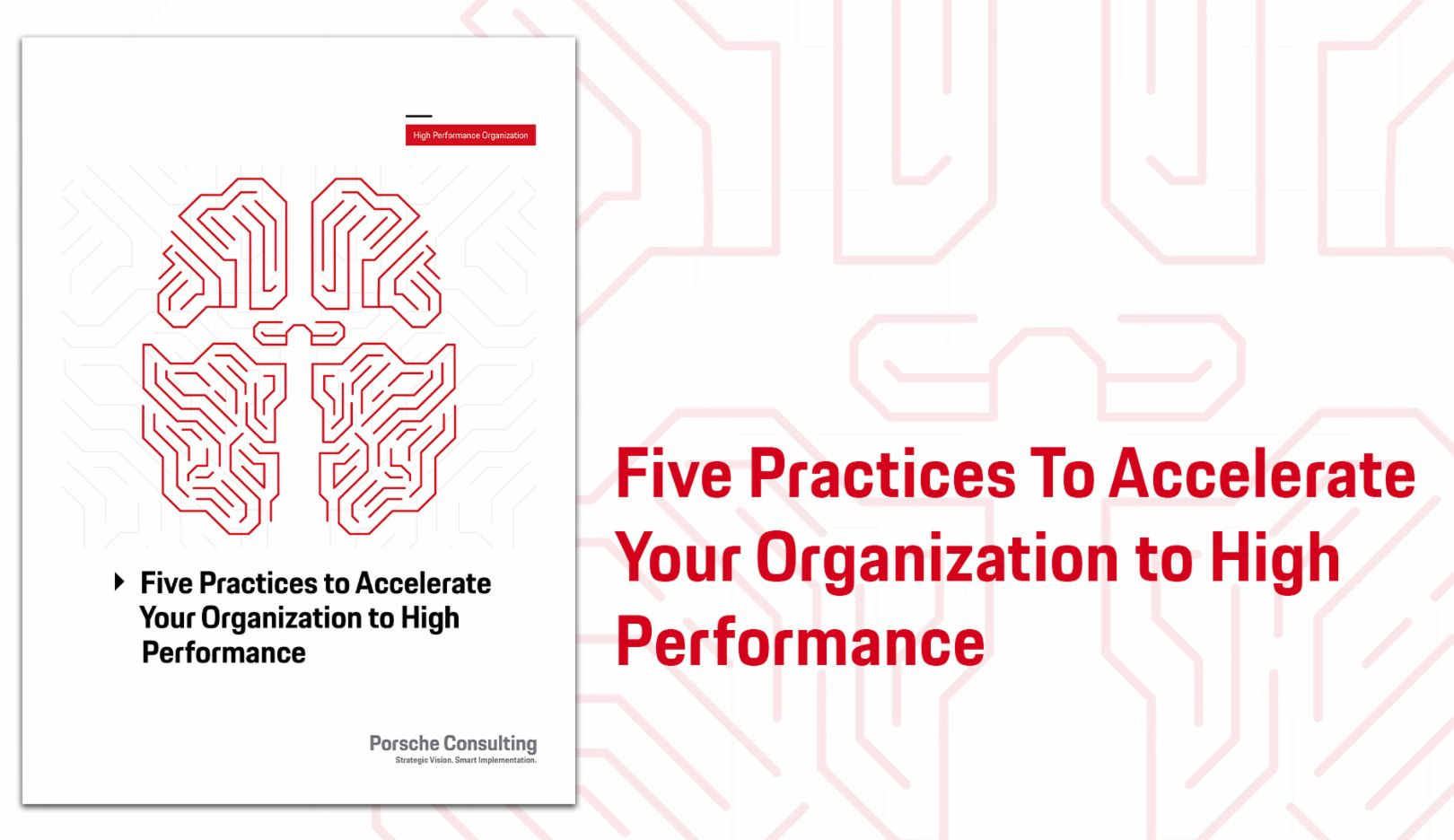 Five Practices to Accelerate Your Organization to High Performance, 2018, Porsche Consulting