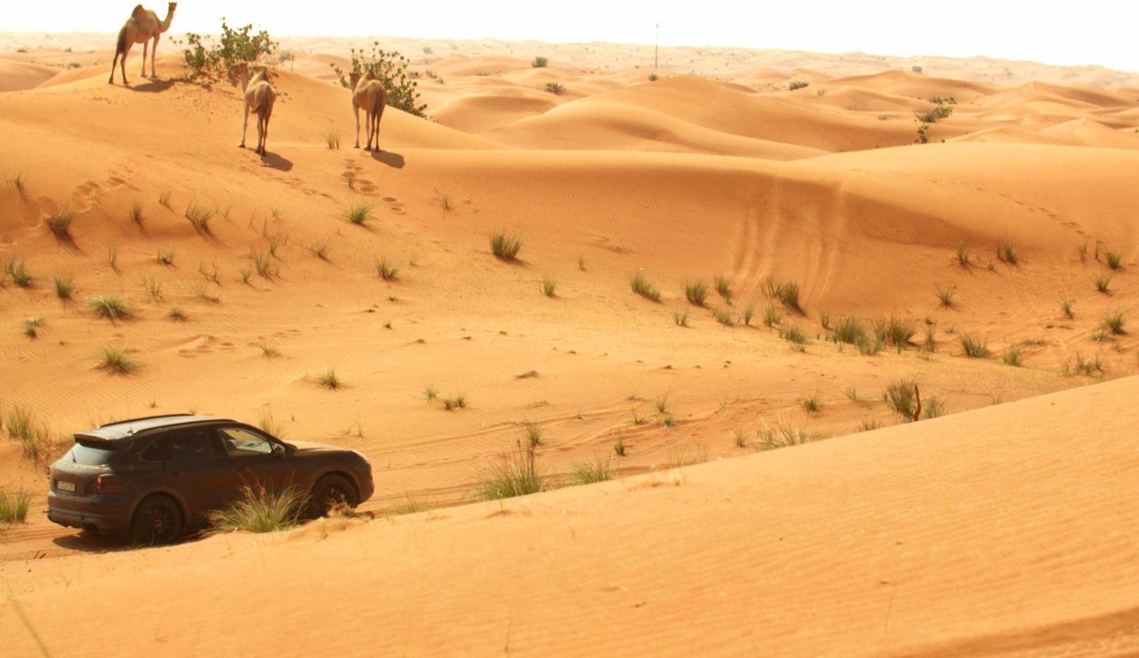 Cayenne, E3, examination, Dubai, 2017, Porsche AG