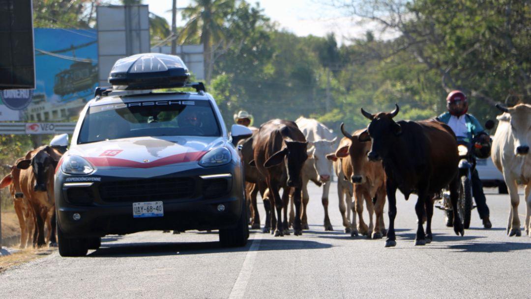 Cayenne S, Expedicion Cayenne, El Salvador, 2018, Porsche AG